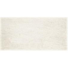 Плитка для стен Paradyz Emilly bianco 300х600